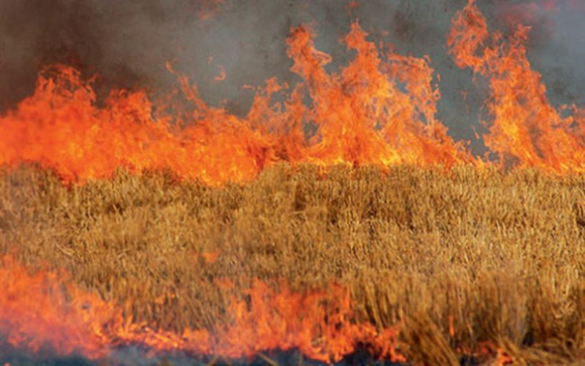 Photo of Καύση αγροτικών εκτάσεων – υπολειμμάτων καλλιεργειών