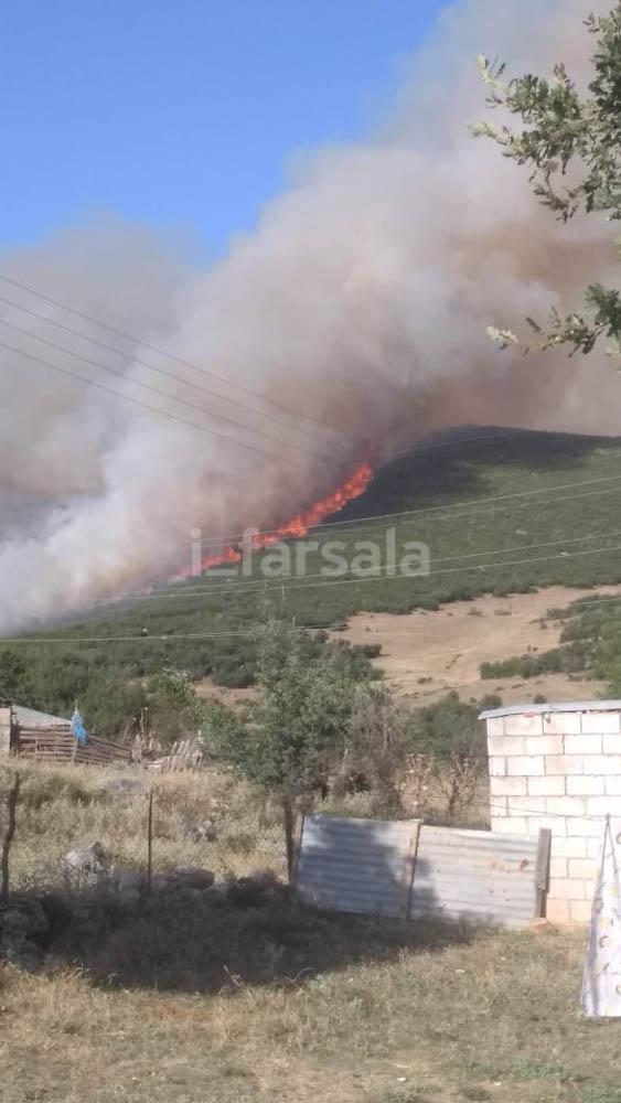 Photo of Φωτιά κοντά στο Κιτίκι Φαρσάλων