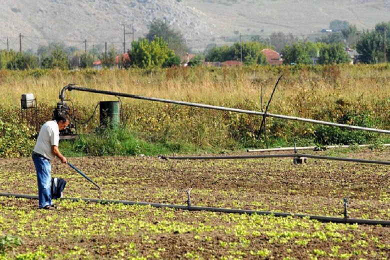 Photo of Πότε έρχεται το νομοσχέδιο για τους αγροτικούς συνεταιρισμούς
