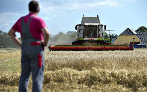 Photo of Κορωνοϊός: Εισήγηση Κομισιόν για ενίσχυση 5.000 ευρώ ανά αγρότη και 50.000 ευρώ ανά αγροτική επιχείρηση