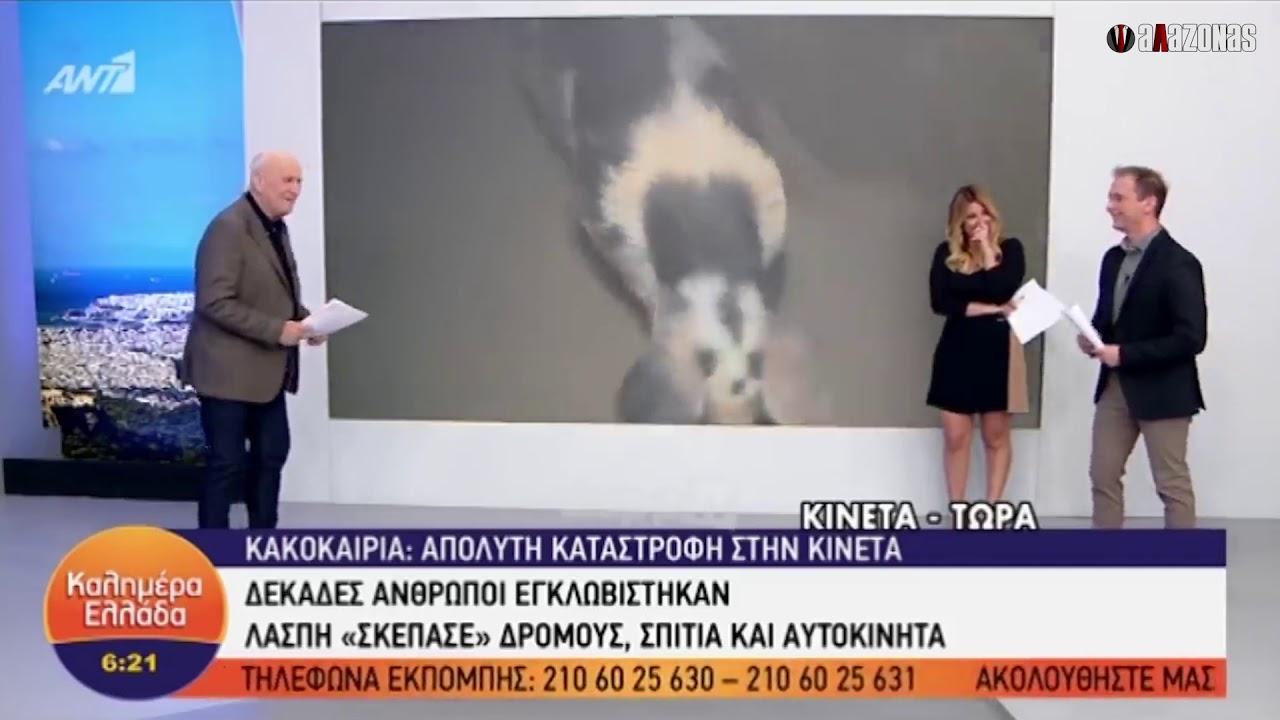 Photo of Παπαδάκης: Θηλυκό γουρούνι κυνηγούσε τον ρεπόρτερ! (Video)
