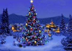 «Άναμμα» Χριστουγεννιάτικου δέντρου στο Βασιλί Φαρσάλων (Vid)