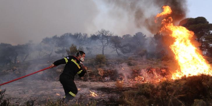 Photo of Τεράστιες ζημιές άφησε πίσω της η πυρκαγιά στην κτηνοτροφική μονάδα στην Αμπελιά – Κάηκαν 400 πρόβατα