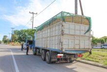 Photo of Αυξημένοι έλεγχοι στην Βαμβακού Φαρσάλων για τα όρια ταχύτητας