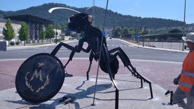 "Photo of Σας άρεσε το Μυρμηγκι – ""Μυρμιδόνας"" στην είσοδο της πόλης;"