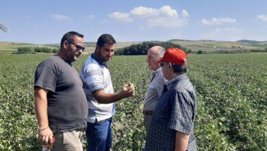 Photo of Άμεσες και δίκαιες αποζημιώσεις στους χαλαζόπληκτους αγρότες ζητά ο Δήμος Φαρσάλων